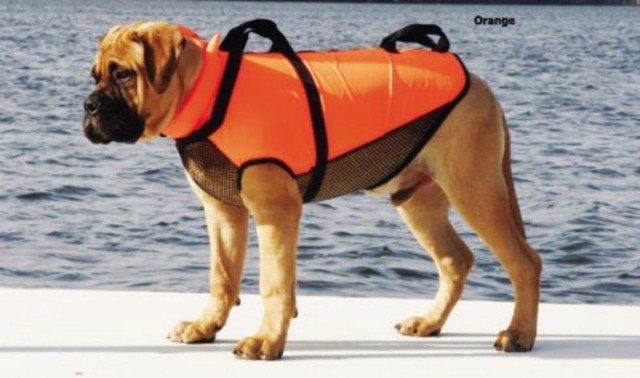 hunde rednignsvest til hund