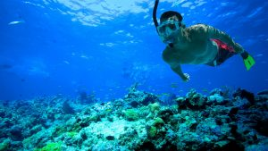 dykkermaske med styrke billede 2