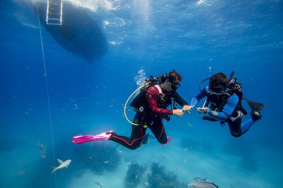 bedste dykkercomputer