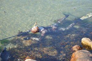 billig undervandsjagt