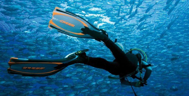 finner til dykning