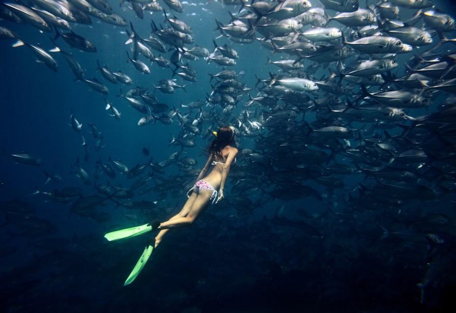 hælremsfinner til dykning