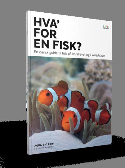rejse dykkerbog om fisk