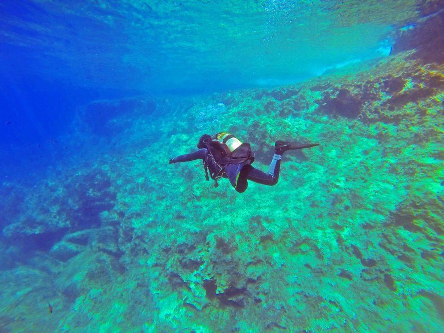 dykning i udlandet eller danmark