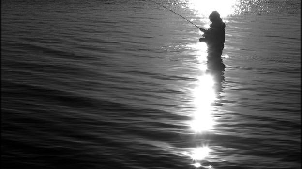 Fisketips billede