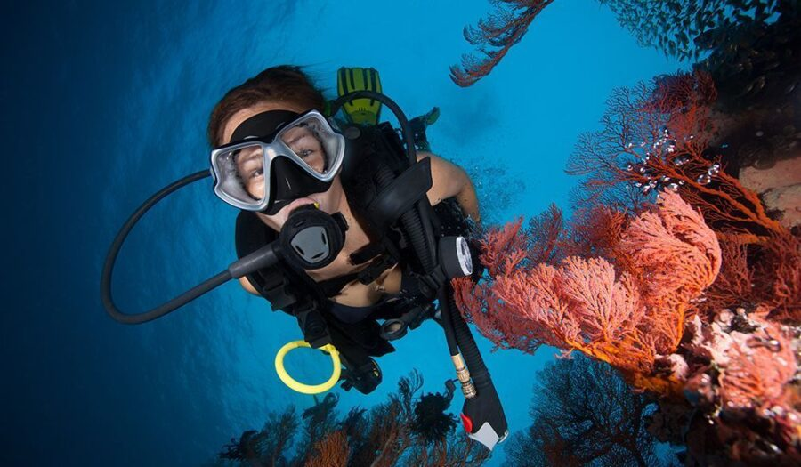 billig dykkermaske