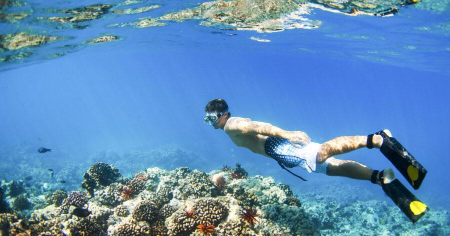 dykkermaske test