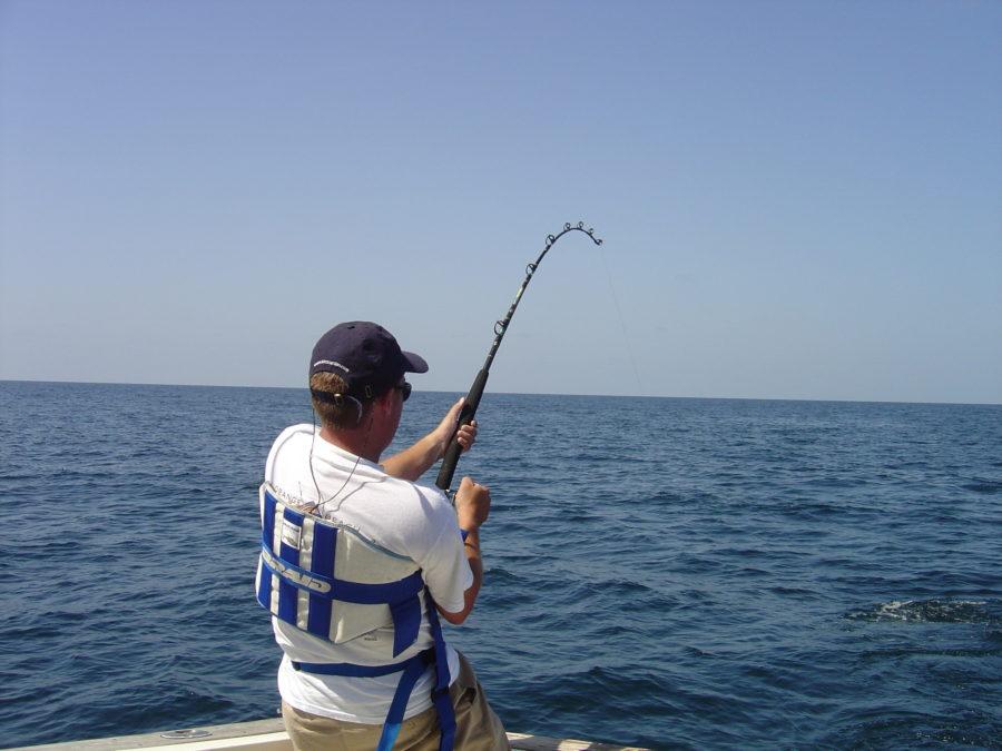 fiskestang valg