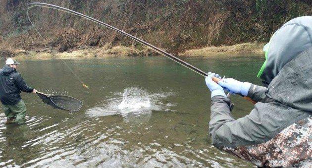 guide til at fiske